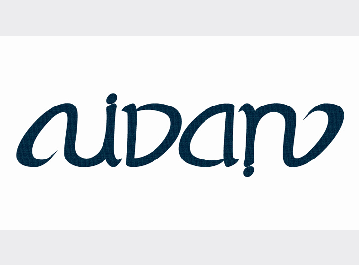 Rotationally symmetric ambigram for the name Aidan. Drawn loosely in pencil, then scanned and created digitally.